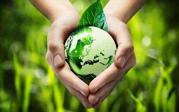 Sống xanh: Trách nhiệm với Tương lai