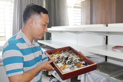 Đi tìm 'mỏ vàng' Chuồn chuồn Việt Nam
