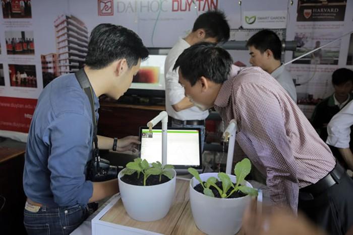 Sinh viên khoa môi trường & công nghệ hóa nghiên cứu trồng rau tại Duy Tân